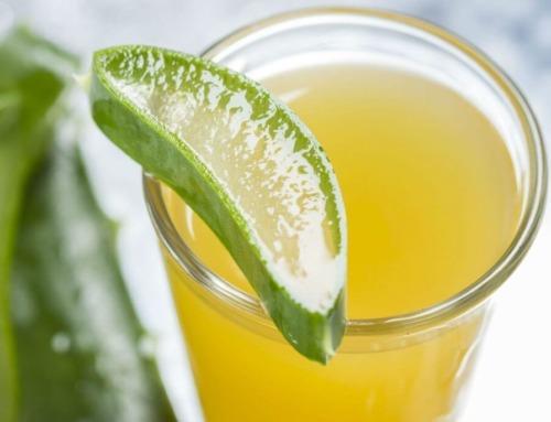 Du bør drikke Aloe Vera saft hverdag – Det er sundt